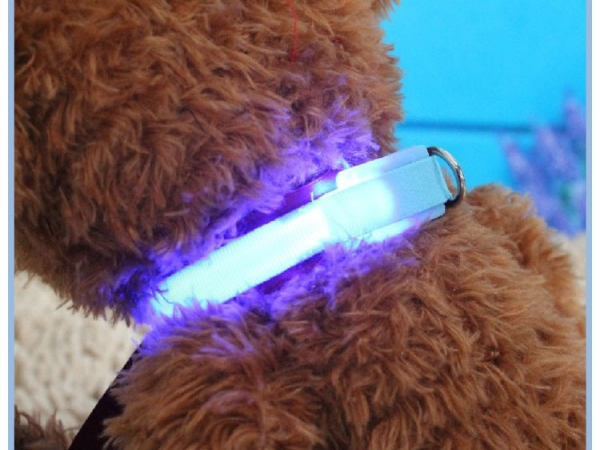 LED flashing pet necklace