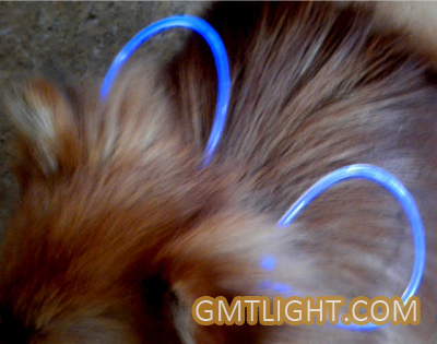 LED Light Pet Collars Bring Your Pet More Happiness