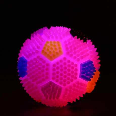 Elastic LED Flashing Dog Squeaky Ball