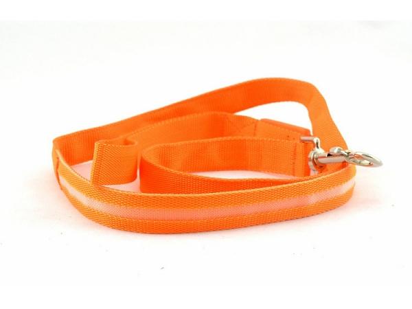 Colorful-light-led-flashing-light-pet-leash