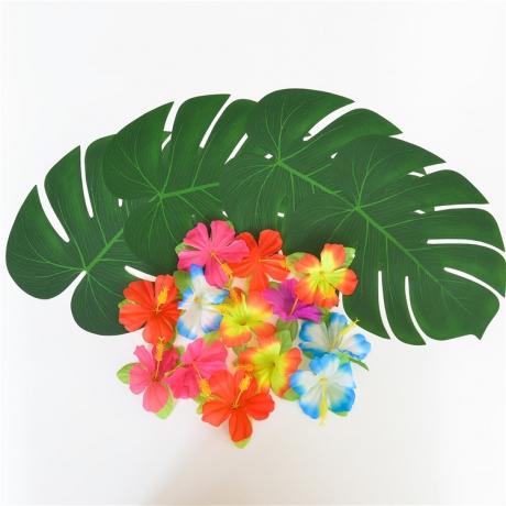 Simulation of Hawaiian Turtle Leaf