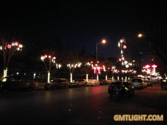 led light for rat new year