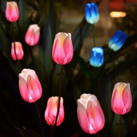 Colorful light Solar garden flower light