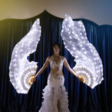 LED light up belly dancing decorative silk fan (YC-001)