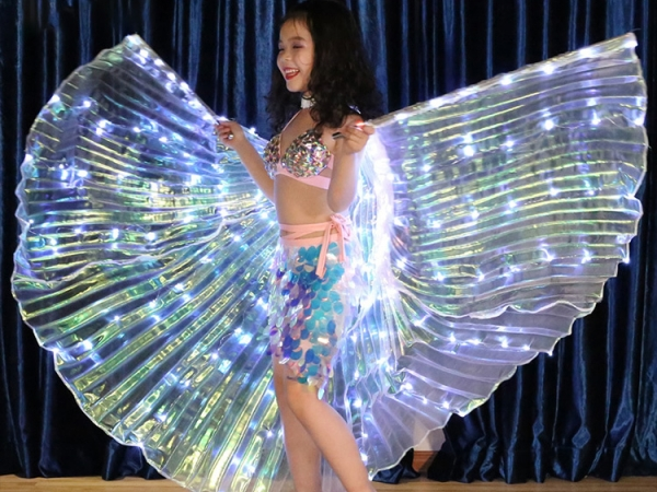 Children's LED light dancing performance decoration wings (YC-003)
