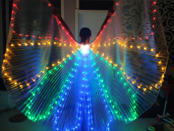 bright large size flash bee wings for Show