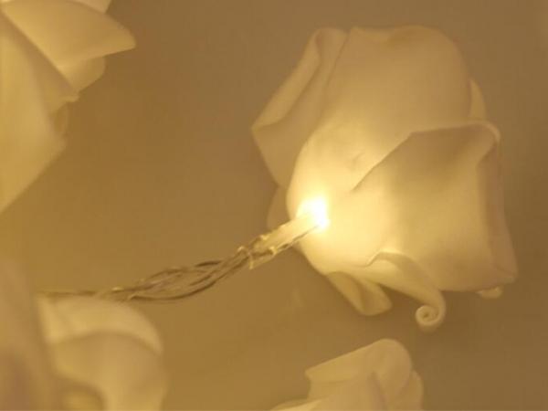 Luminous rose lamp string for wedding
