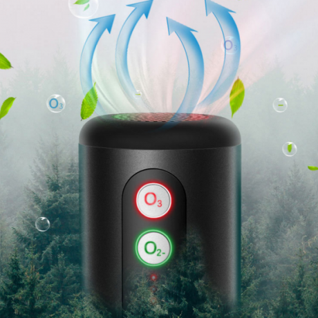 Negative ion ozone air purifier for automobile