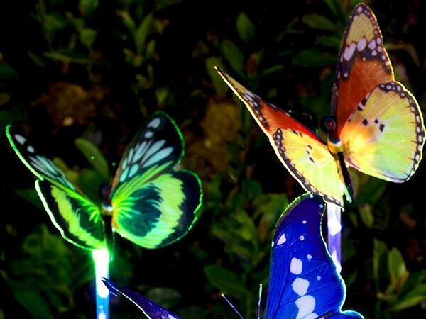Solar lawn optical fiber butterfly landscape LED lamp