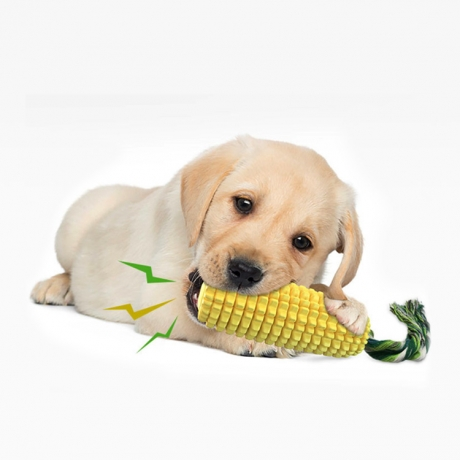 Corn shape sound type dog toothbrush (No.DB-020Y)