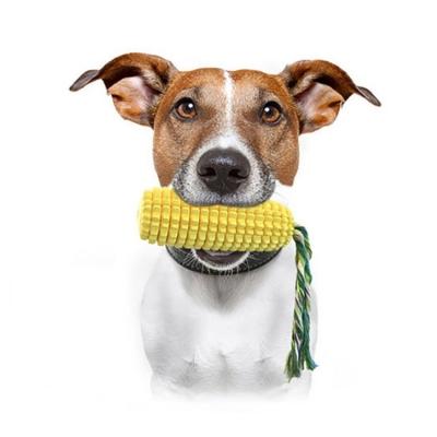 Corn shape dog toothbrush with sound (50pcs/ctn)