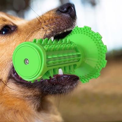 Amazon hot sales dog sound toy toothbrush (50pcs/ctn)