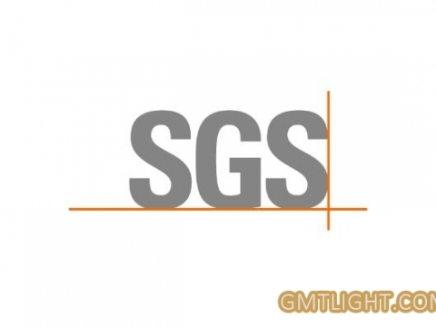 What are the core services of SGS?