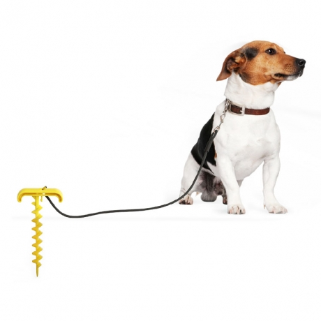 Dog chowing toy ball with rope tie-out stake (No.DB-X02)