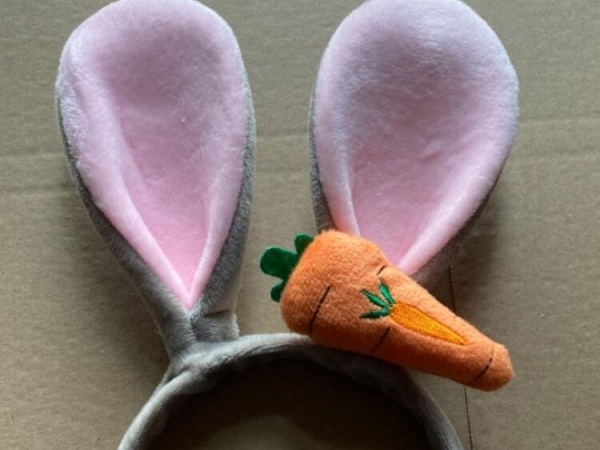 Judy rabbit with 3D radish hair band decoration