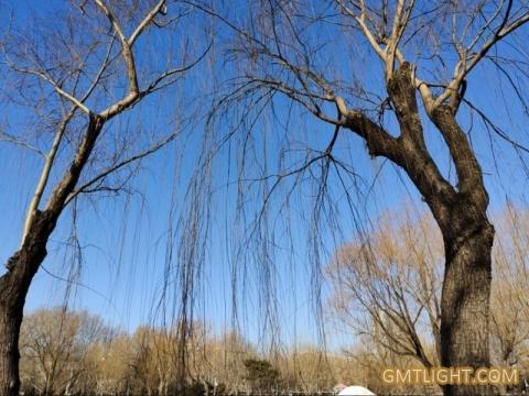 Blue sky battle: Beijing's haze days are greatly reduced