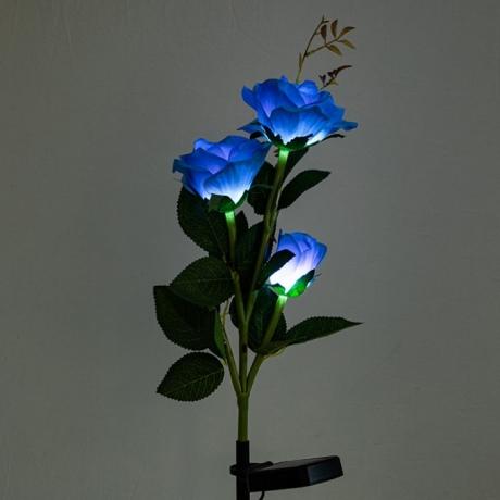 Solar simulation rose lamp