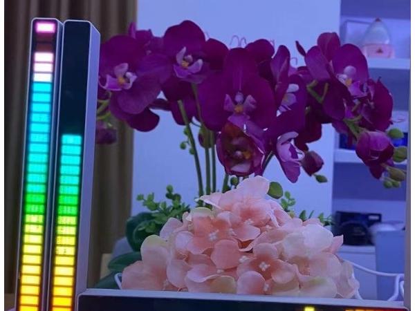 Voice control pickup seven color rhythm light
